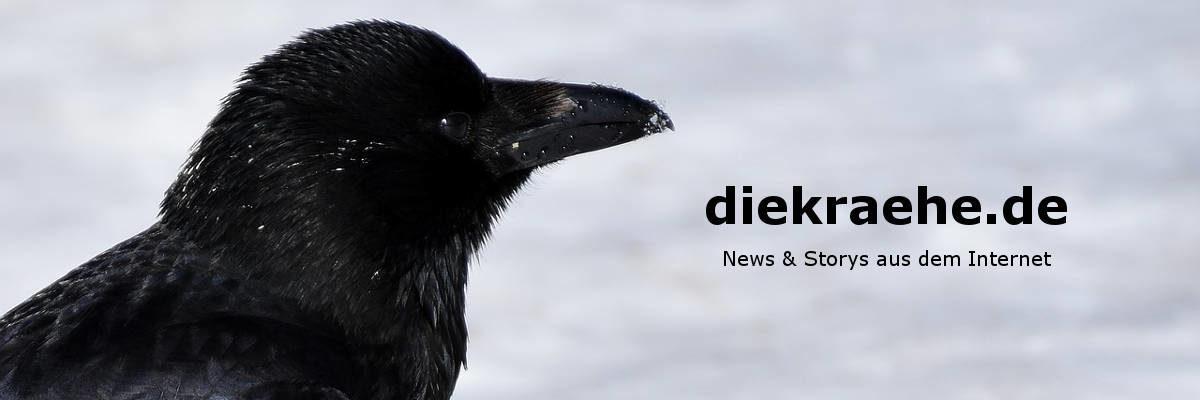 diekraehe.de - News & Storys aus dem Internet